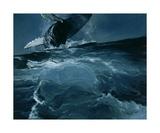 Humpback Whale Series I: IV