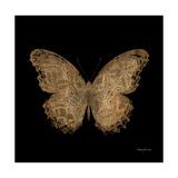 Aurelian Butterfly 1