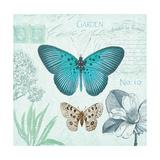 Butterflies and Botanicals 2