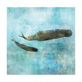 Ocean Whale 2