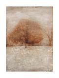 Rustic Gold Oak