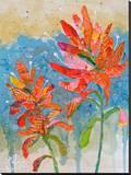 Indian Paintbrush II