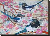 Magpies And Pink Blossoms