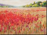 Poppies And Trees VI