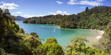 Picturesque Bay in Idyllic Kenepuru Sound  Marlborough Sounds  South Island  New Zealand