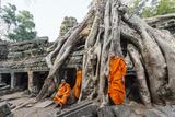 Cambodia  Siem Reap  Angkor Wat Complex Monks Inside Ta Prohm Temple (Mr)