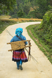 Flower Hmong Woman Walking Along Road  Nr Bac Ha  Nr Sapa  N Vietnam