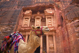 Camel in Front of the Treasury, Petra, Jordan, Middle East Papier Photo par Neil Farrin