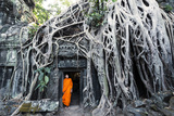 Cambodia, Siem Reap, Angkor Wat Complex. Buddhist Monk Inside Ta Prohm Temple (Mr) Papier Photo par Matteo Colombo
