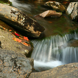 Reflections of autumn color in rocky creek  Smoky Mountains National Park  Tennessee  USA