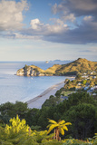 View of Hahei Beach  Coromandel Peninsula  North Island  New Zealand