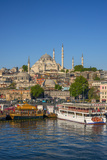 Turkey  Istanbul  Sultanahmet  the Golden Horn  Suleymaniye Mosque