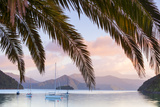 Yachts Anchored on the Idyllic Queen Charlotte Sound  Marlborough Sounds  South Island  New Zealand