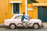 Male Cyclist and Ambassador Car  Pondicherry (Puducherry)  Tamil Nadu  India