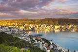 Elevated View over Central Wellington Illuminated at Sunrise  Wellington  North Island  New Zealand