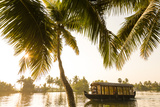 Traditional House Boat  Kerala Backwaters  Nr Alleppey  (Or Alappuzha)  Kerala  India