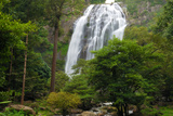 The 300-Foot-Tall Klong Lan Waterfall and Surrounding Forest