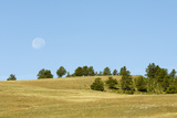 The Moon Rising over a Landscape of Gently Rolling Hills