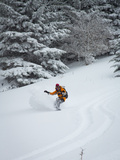 A Woman Snowboards Through Backcountry Powder in the Canaan Valley  West  Virginia