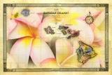A 1876 Centennial Map of the Hawaiian Islands with Artwork of a Plumeria Flower