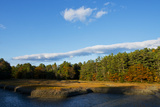 Evergreen Trees and Fall Colors Along South Freeport Cove  Maine