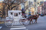 A Horse Drawn Carriage Travels Along Streets Near Chicago's Loop Area
