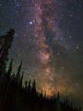 The Summer Milky Way Appears Dazzling over Yellowstone National Park