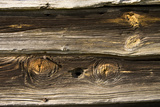 Gnarled Knots and Dried Grain Show the Age of Weathered Barn Wood