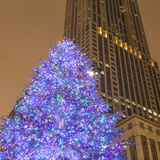 Christmas Tree on North Michigan Ave in the Magnificent Mile  2013