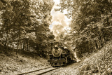 The Essex Steam Train Chugs Through the Forest on a Summer Day