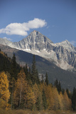 Eagle Peak and Uto Peak Rise Above a Woodland in Fall Color