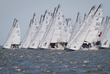 Sailboats on the Starting Line of a Regatta on the Chesapeake Bay