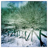 An Old Fence and a Dusting of Snow