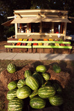 An Outdoor Vegetable Stand in Duck  North Carolina