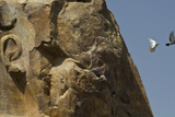 The Eroded Face of the Colossus of Memnon
