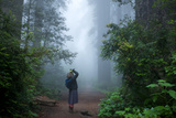 A Woman Peers at a Redwood Tree Through Coastal Fog