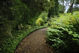 A Garden Path at Sissinghurst Castle