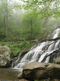 Dark Hollow Falls in Shenandoah National Park