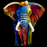 Great Elephant Giclée par Clara Summer
