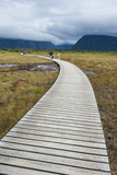 Walkway Along Jerrys Pond in Gros Morne National Parknewfoundland  Canada  North America