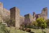 Alcazaba Walls  Malaga  Andalucia  Spain  Europe