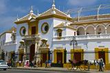 Plaza De Toros  Seville  Andalusia  Spain  Europe