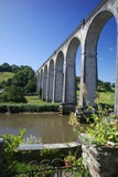 Calstock Railway Viaduct  Tamar Valley  Cornwall  England  United Kingdom  Europe