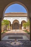 Courtyard in Alcazaba  Malaga  Andalucia  Spain  Europe