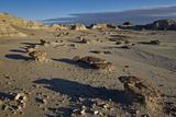 Rocks in the Badlands  Bisti Wilderness  New Mexico  United States of America  North America
