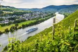 Cruise Ship Passing a Vineyard at Muehlheim  Moselle Valley  Rhineland-Palatinate  Germany  Europe