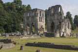 Roche Abbey  South Yorkshire  Yorkshire  England  United Kingdom  Europe
