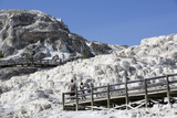 Mammoth Hot Springs  Yellowstone National Parkwyoming  United States of America  North America