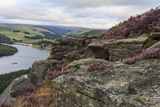 Bamford Edge with Heather Above Ladybower and Ashopton Bridge at Dawn