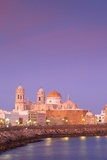 Church of Santa Cruz and Cathedral  Cadiz  Cadiz Province  Andalucia  Spain  Europe
